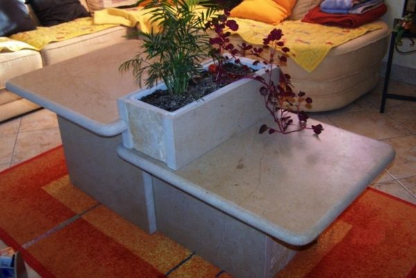 Table basse jardinière